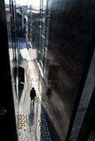 新建築 2008年2月号 Dancing trees, Singing birds