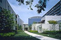 新建築 2000年12月号 LOUIS VUITTON GINZA