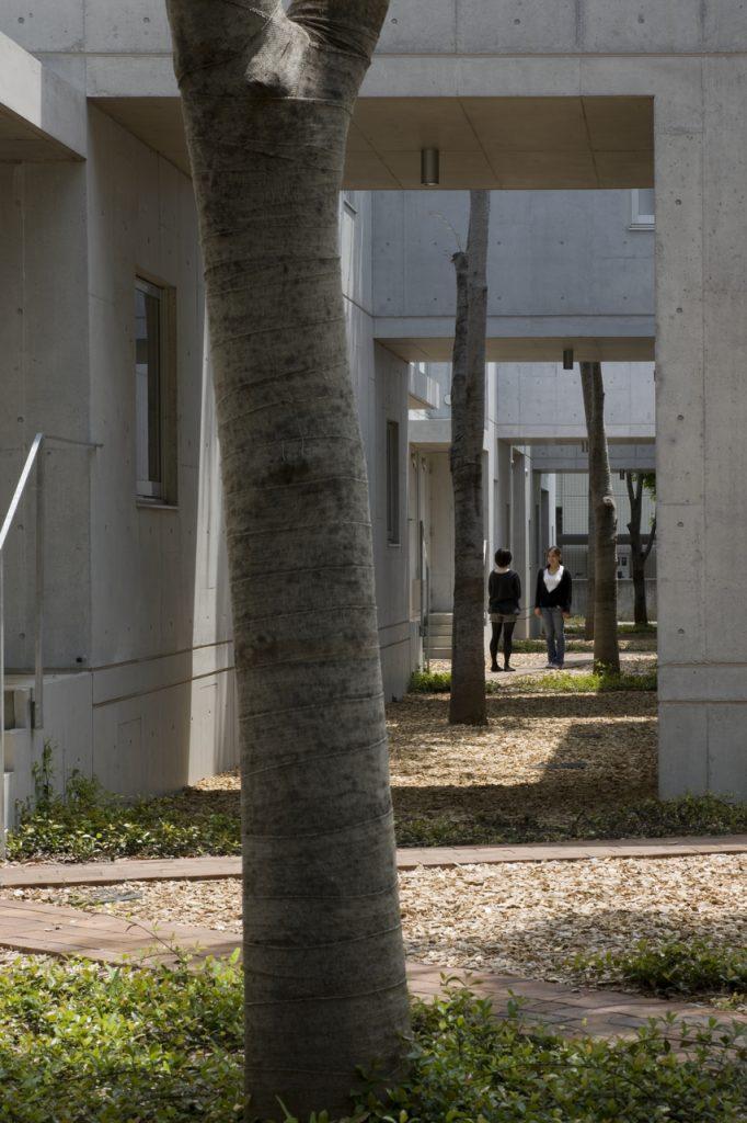 新建築 2009年8月号 四の坂タウンハウス