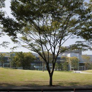 東北大学青葉山東キャンパス