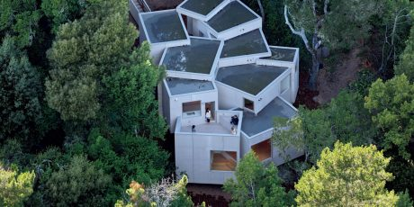 Multicellular House