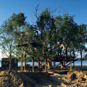 無人島のツリーテラス