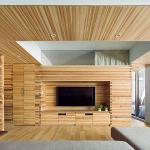 垂木の住宅