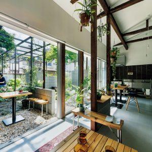 藤棚のアパートメント