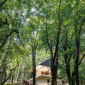 12「森の山荘」桑原茂建築設計事務所