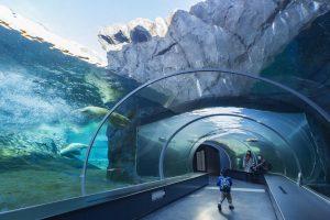 札幌市円山動物園 ホッキョクグマ館・ゾウ舎