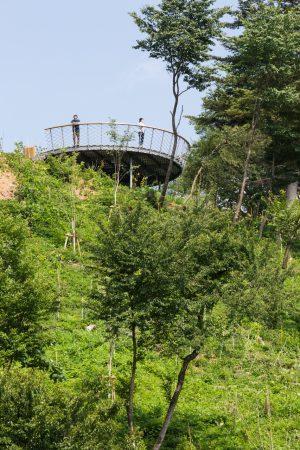 横瀬町 (仮称) 花咲山プロジェクト