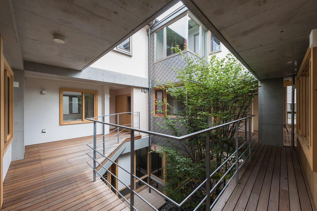 新建築 2017年12月号 Tree-ness House Tree-ness House
