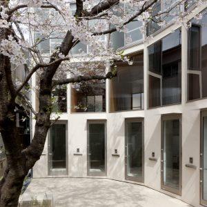 サクラノキテラス - 設計: 伊藤博之建築設計事務所 + O. F. D. A. 施工: カワベホームズ