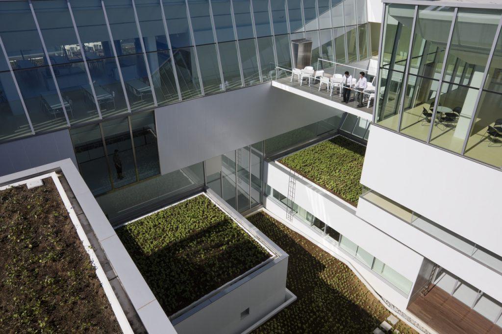 新建築 2010年11月号 東京国際空港(羽田)国際線旅客ターミナル