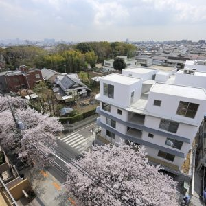 桜並木の集合住宅