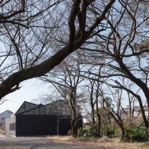 一橋大学空手道場 - 設計: 木下昌大 / KINO architects 施工: 大出産業
