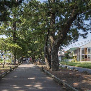 三保松原の 住宅と店舗