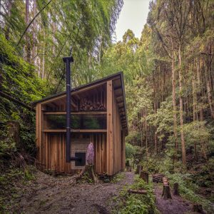 森のサウナ