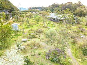 犬島プロジェクト くらしの植物園